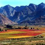 5. Jižní Afrika.