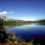 12. Jasper National Park, Kanada.