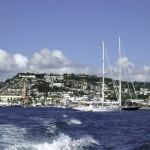 6. Martinik.